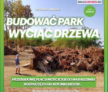 kolejna wycinka drzew w Płocku