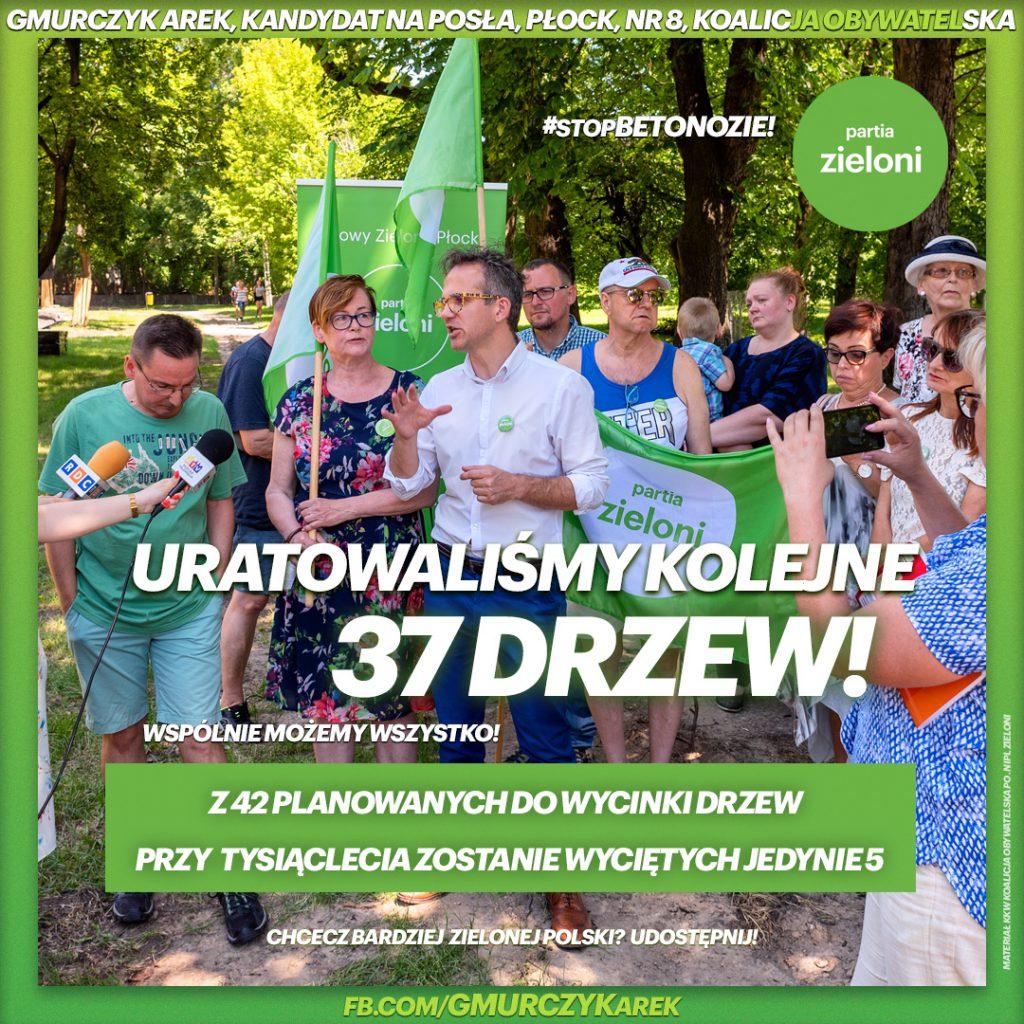 uratowaliśmy kolejne 37 drzew przed wycinką w Płocku